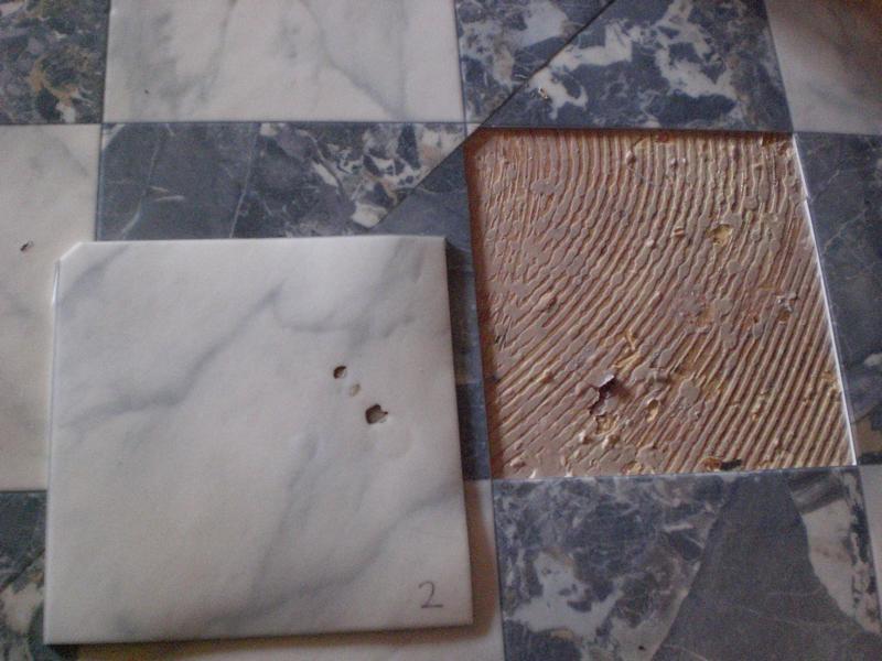 Festellungen zu PVC-Schaden im Esszimmer eines Privathauses in Breitenthal